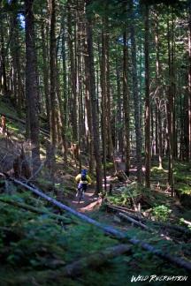in_the_squamish_woods_wild_rec