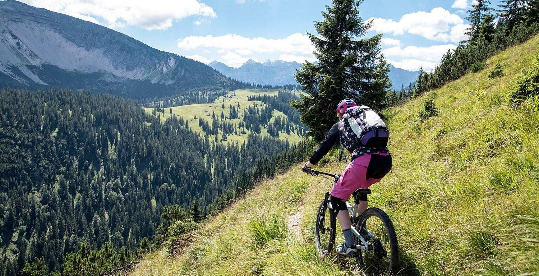 Mountainbikerin von hinten auf Alpentrail