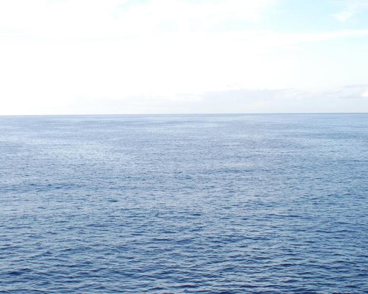 Das Ozeanbuch – Über die Bedrohung derMeere