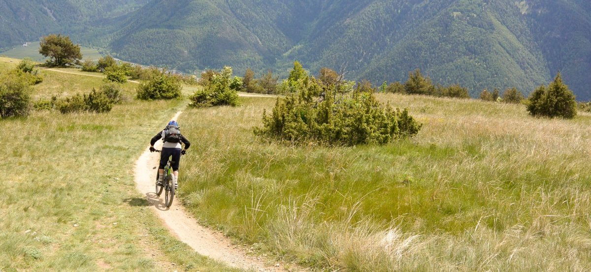 The freedom of…Mountainbiking