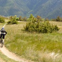 The freedom of…Mountainbiking