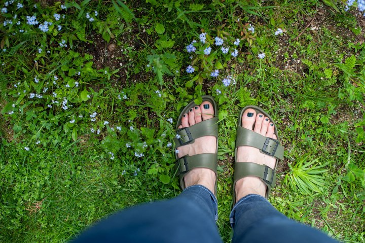 Frauenfüße in Birkenstocks